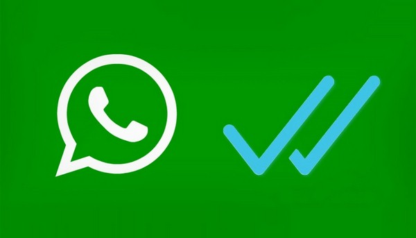 WhatsApp check marks